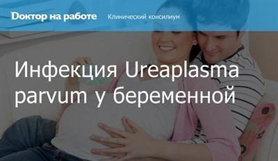 Уреаплазмоз - это инфекция, которая передается половым путем, вызывают ее микроорганизмы уреаплазмы (ureaplasma